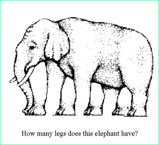 elephantillusion.jpg